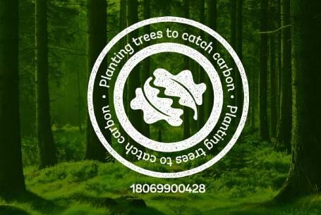 Woodland Trust Carbon Capture Scheme